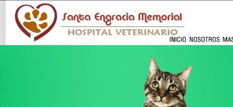 Santa Engracia Memorial Hospital Veterinario
