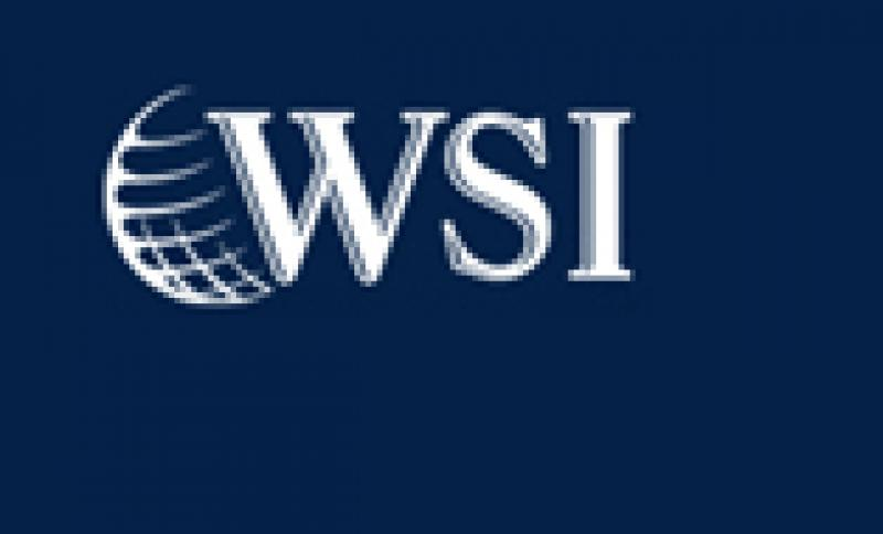 WSI Internet Franchise