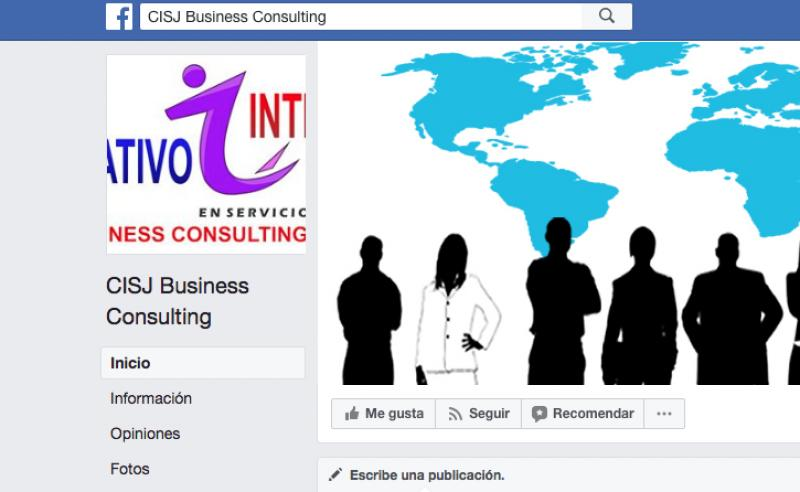 CISJ Business Consulting
