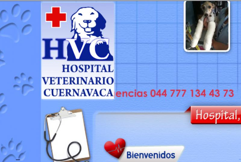 Hospital Veterinario Cuernavaca